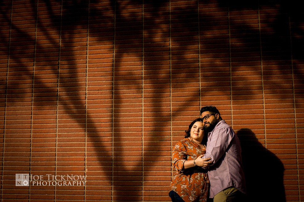 long-island-city-engagement-photos-1